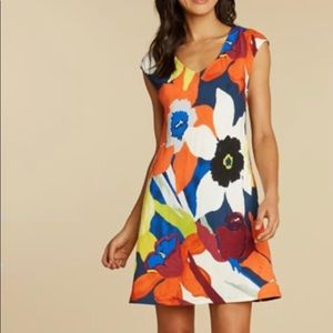 Jams World Sherry Dress in Bamboo Orchid
